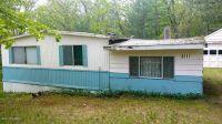 Home for sale: 8217 W. Oakwood Avenue, Baldwin, MI 49304