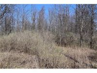 Home for sale: Kent Rd., Albion, NY 14411