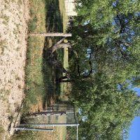 Home for sale: 5022 Cynthia, Corpus Christi, TX 78410