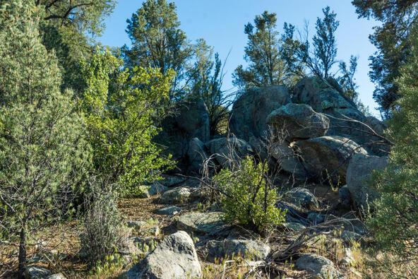17955 W. Buckhorn Dr., Peeples Valley, AZ 86332 Photo 14