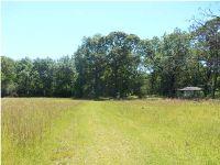 Home for sale: 6951 Charlie Ln., Wilmer, AL 36587