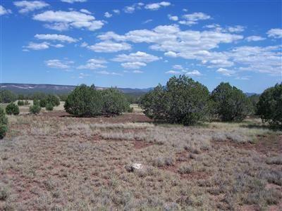 3835 W. Yukon Dr., Ash Fork, AZ 86320 Photo 9