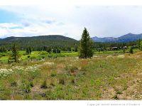 Home for sale: 718 Tiger Rd., Breckenridge, CO 80424