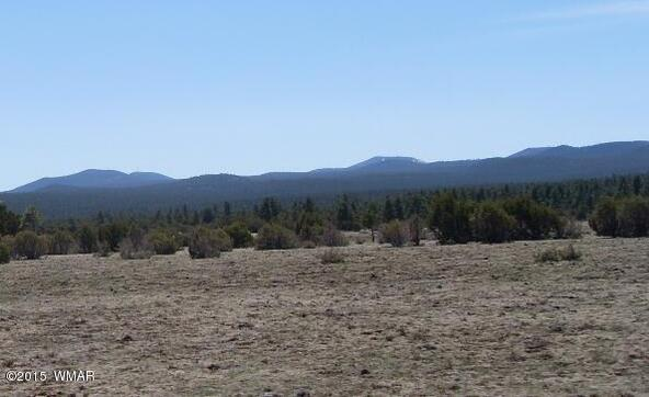 40.88 Acre Of 106-36-034-I, Vernon, AZ 85940 Photo 11