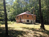 Home for sale: 15108 Avenue Du Chalet, Wolverine, MI 49799
