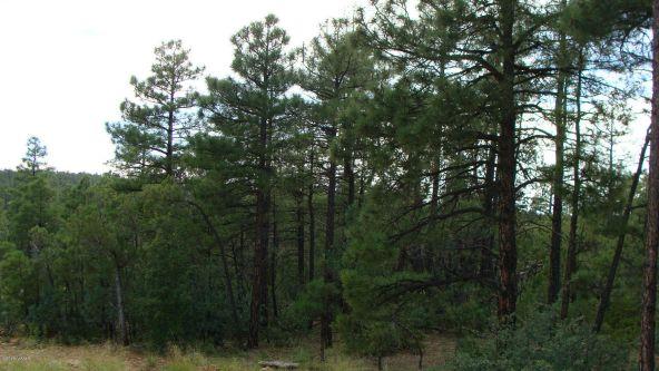 2380 S. Twin Peak Trail, Show Low, AZ 85901 Photo 4