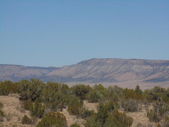 57154 N. Bridge Canyon Parkway, Seligman, AZ 86337 Photo 5