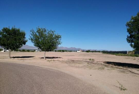 6505 W. Palo Verde Ln., Pima, AZ 85543 Photo 8
