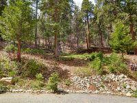 Home for sale: 0 Maple, Lake Arrowhead, CA 92385