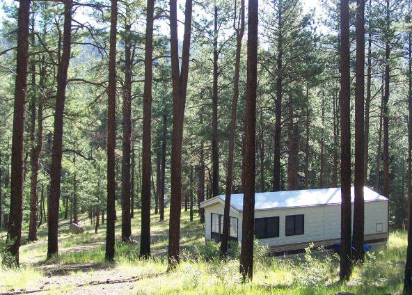 10 County Rd. 2153, Alpine, AZ 85920 Photo 3