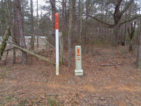 14.34+/- 186 Woodley Spur, Ramer, AL 36069 Photo 10