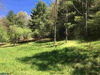 Home for sale: 15480 Crabtree Falls Hwy., Montebello, VA 24464