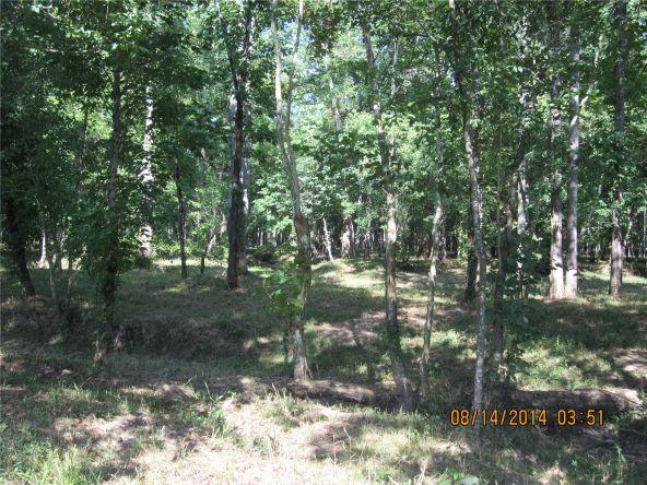 1865 County Rd. 99, Gaylesville, AL 35973 Photo 34