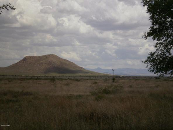 1588 N. Steele, Cochise, AZ 85606 Photo 35