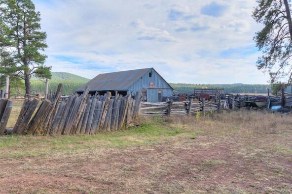 8100 W. Dk Ranch Rd., Flagstaff, AZ 86005 Photo 37
