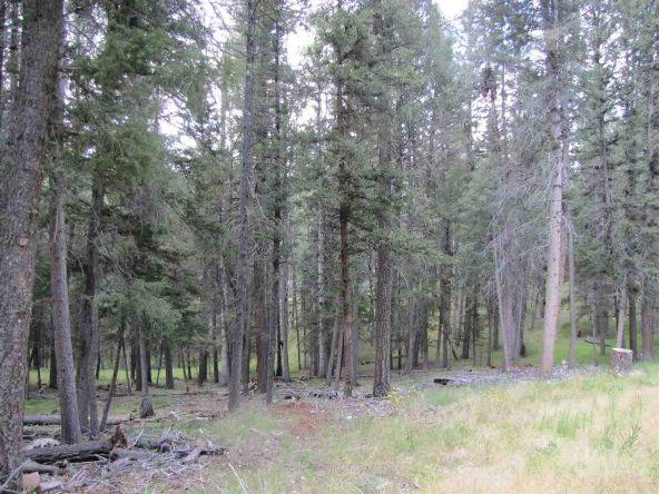 119 W. Pecos Canyon Estates Rd., Tererro, NM 87573 Photo 23
