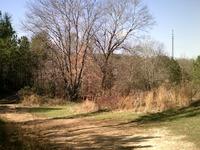 Home for sale: W. Nickajack Rd., Ringgold, GA 30736