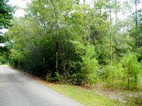 Home for sale: 0 Monarch Cir., Foley, AL 36535