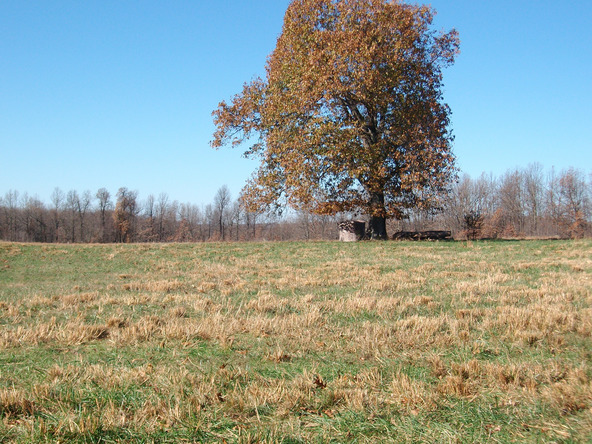 1059 Pleasant Run Rd., Mammoth Spring, AR 72554 Photo 19