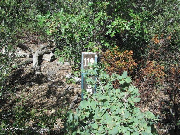 3120 W. Snowberry Loop, Show Low, AZ 85901 Photo 3
