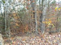Home for sale: Lot 16 Wilderness Trail, Cosby, TN 37722