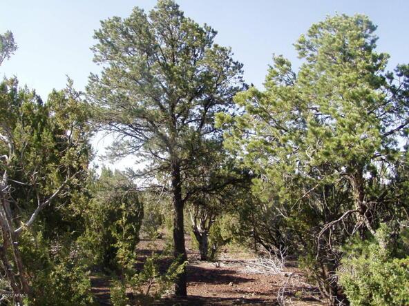 46 Uphill Trail, Vernon, AZ 85940 Photo 2