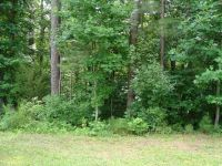 Home for sale: Lot 23 Green Valley Dr., Littleton, NC 27850