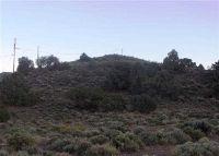 Home for sale: 000 Park Dr., Carson City, NV 89706