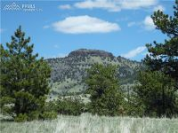 Home for sale: 129 Eagle Nest Trail, Guffey, CO 80820