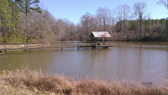 1 County Rd. 57, Abbeville, AL 36310 Photo 5