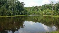 Home for sale: 0 Lake Rd., Sewanee, TN 37375