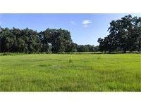 Home for sale: Cr 738, Webster, FL 33597