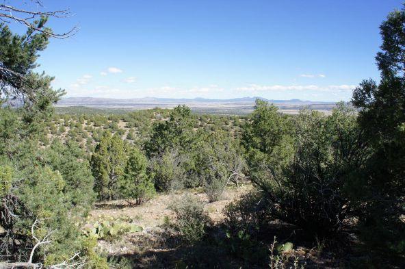 487 Sierra Verde Ranch, Seligman, AZ 86337 Photo 17