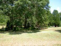 Home for sale: Lot 34 Park Pl. Terrace, Fort Gaines, GA 39851