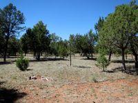 Home for sale: 2338 Puma Cir., Overgaard, AZ 85933