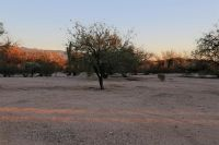 Home for sale: 9700 E. Walnut Tree, Tucson, AZ 85749