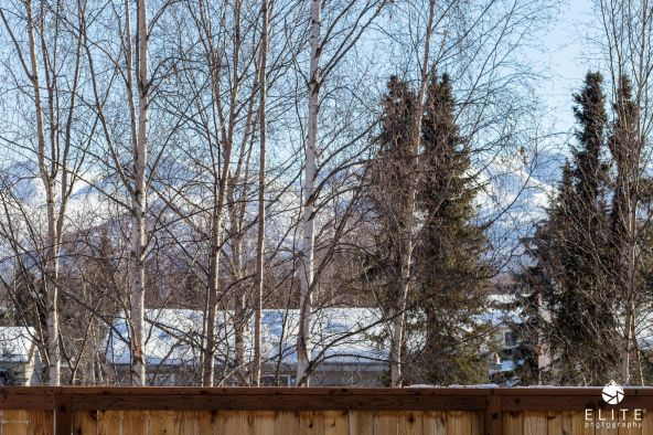 3159 Amanda Gayle Cir., Anchorage, AK 99507 Photo 19
