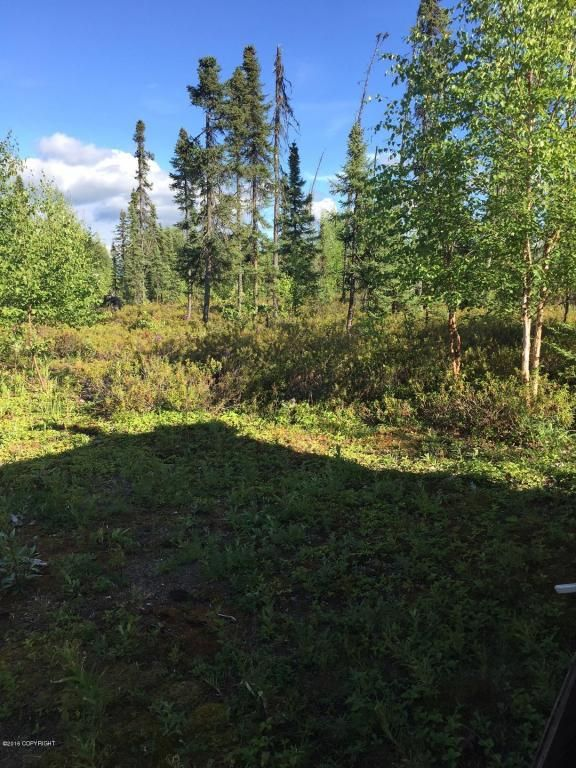 16350 Little Beaver Access, Wasilla, AK 99652 Photo 17