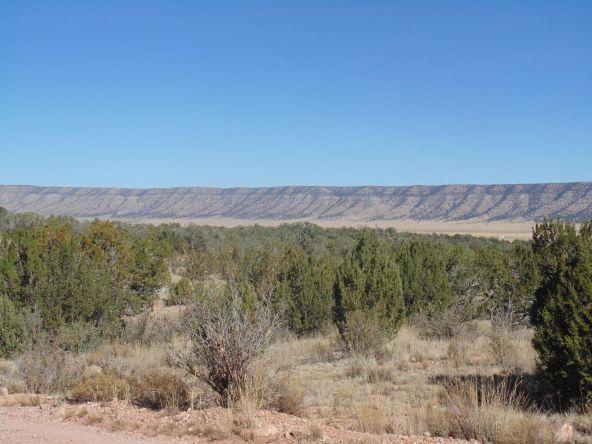 57154 N. Bridge Canyon Parkway, Seligman, AZ 86337 Photo 1