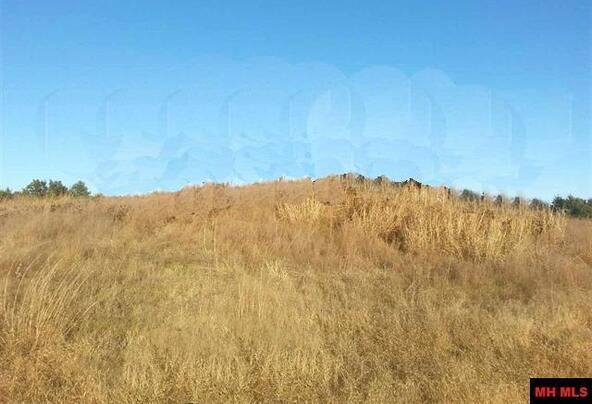 20716 Bud's. Ln., Lead Hill, AR 72644 Photo 12