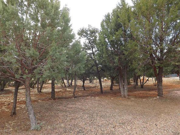 2318 Kitfox Cir., Overgaard, AZ 85933 Photo 12