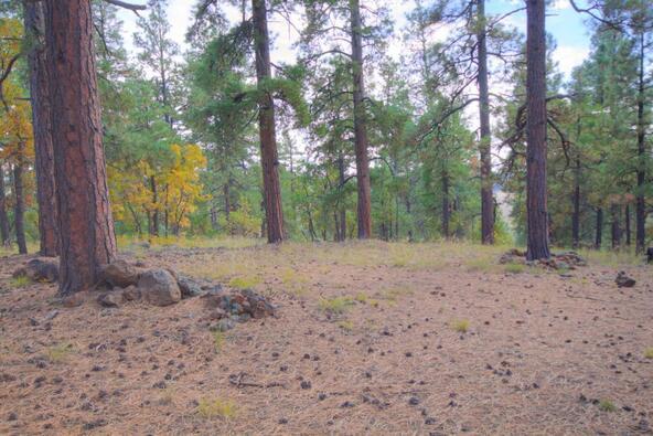 8100 W. Dk Ranch Rd., Flagstaff, AZ 86005 Photo 12