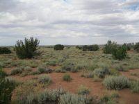 Home for sale: Lot 545 N. Woodridge Ranch #13 Rd., Snowflake, AZ 85937