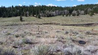 Home for sale: Baca Canyon Rd., Taos, NM 87571