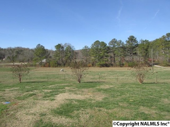 13951 Gallant Rd., Gallant, AL 35972 Photo 24