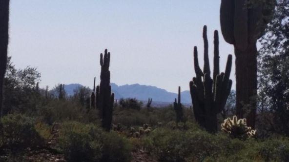 40024 N. 12th St., Phoenix, AZ 85086 Photo 6
