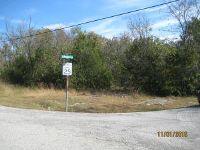 Home for sale: Lake View Ln., Eagle Rock, MO 65641