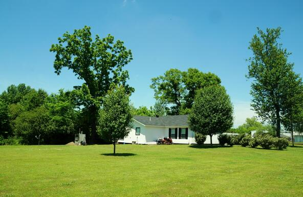 145 Willow, Hector, AR 72843 Photo 45