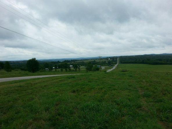 17001 N. Hwy. 7, Lead Hill, AR 72644 Photo 7