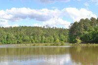 Home for sale: Lot 1 Creek Landing Rd., Alexander City, AL 35010